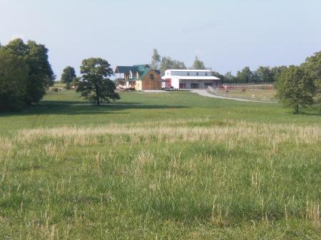 Zena Suri Alpacas: house, barn, field and some of the alpacas